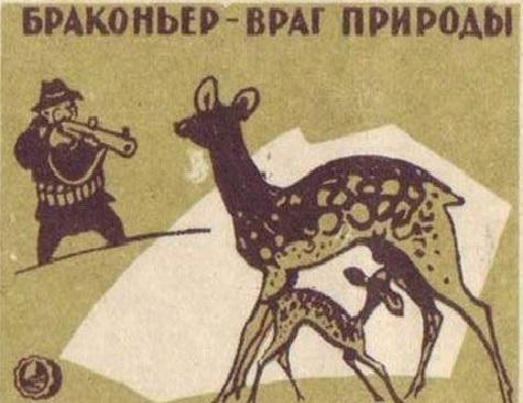 Полицейские задержали подозреваемого внезаконной охоте налося вТомской области
