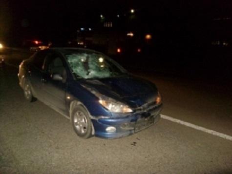 Врезультате дорожно-траспортного происшествия натрассе Ярославль-Рыбинск умер пешеход