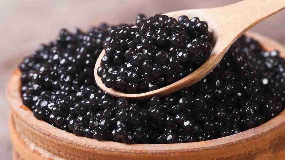 ВЯрославской области будут производить черную икру