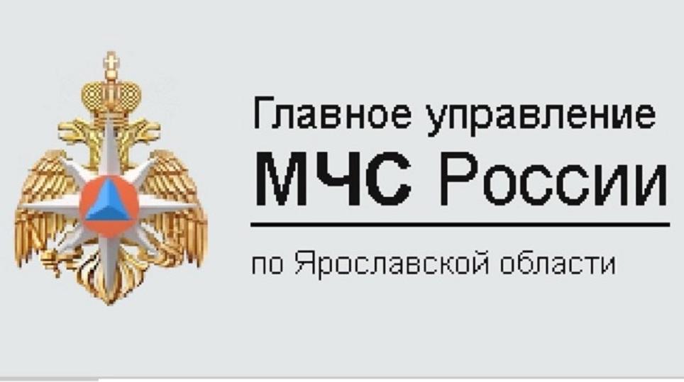 Шофёр  автобуса, попавшего вДТП вЯрославской области, скончался  вреанимации