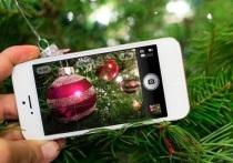 Ярославцы на связи: 5 фактов о Новогодней ночи в Ярославской области