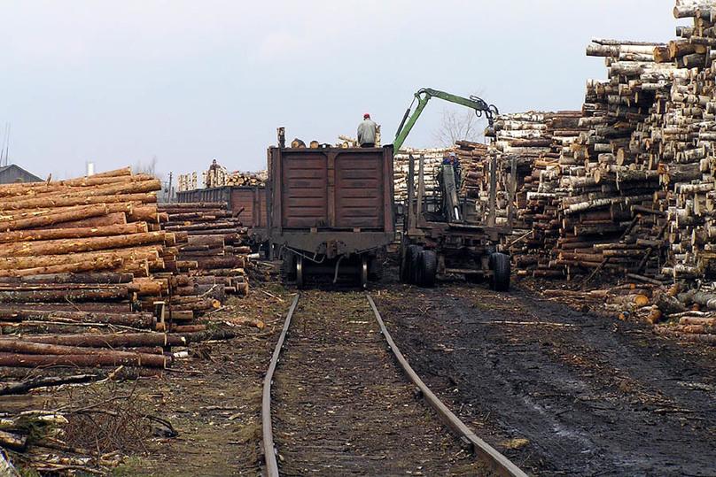 СКзавел дело после обрушения дров на9-летнего ребенка вДанилове